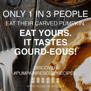 hubbub_pumpkin-rescue-16